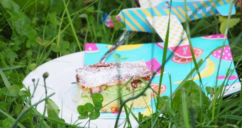 papageienkuchen im gras
